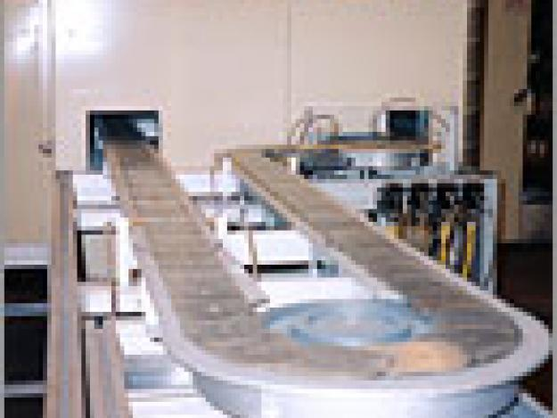 chain conveyor ovens & furnaces